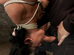 35yr old, super smoking hot cougar, is bound in a reverse prayer, suspended upside down, nipple tortured, face fucked and made to cum over and over.