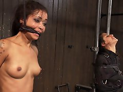 2 girls are made to cum by machines. Intense sybian orgasms destroy Skin. Lyla is fucked into exhaustion. The strongest orgasms they have ever had.