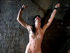 Elise Graves finds herself locked in a basement and used as a sex toy by random men.
