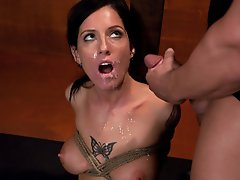Sexy Tricia Oaks dominated and fucked in hard bondage.