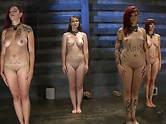 Four sluts struggle to become the next trainee. Two stepped up, but will they succeed or fail? In the end, I just want one...