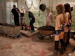 Our own Domme, Sophie Monroe is brought down from The Upper Floor to experience the training first hand.