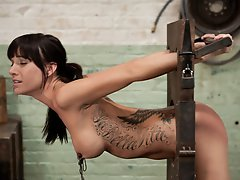Gia DiMarco is face fucked and objectified by slave trainers in the basement